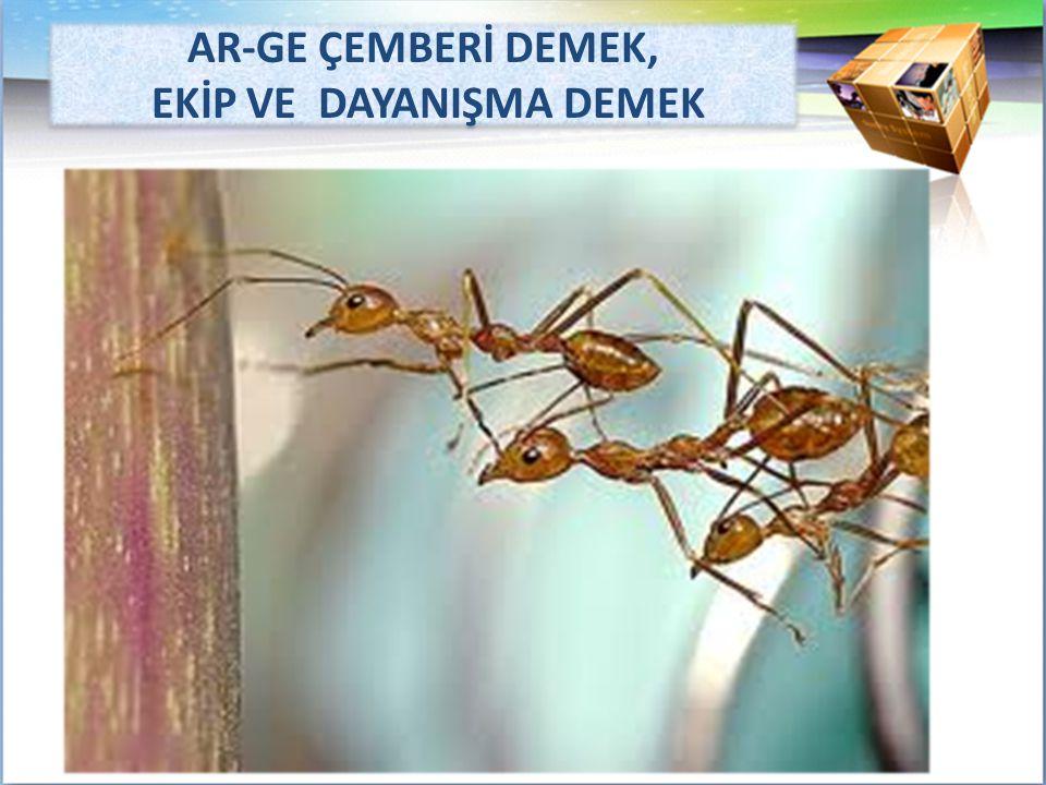 AR-GE ÇEMBERİ