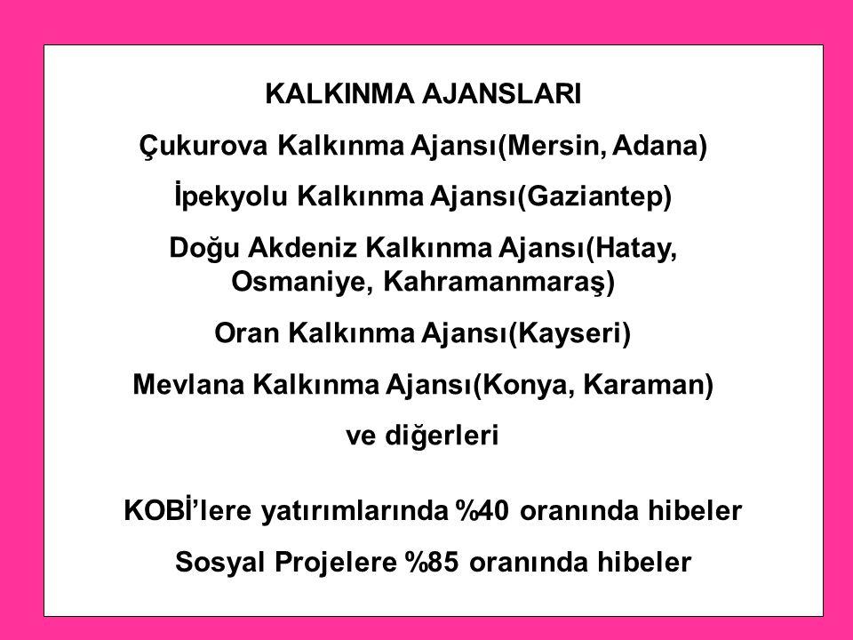 KALKINMA AJANSLARI Çukurova Kalkınma Ajansı(Mersin, Adana) İpekyolu Kalkınma Ajansı(Gaziantep) Doğu Akdeniz Kalkınma Ajansı(Hatay, Osmaniye, Kahramanmaraş) Oran Kalkınma Ajansı(Kayseri) Mevlana Kalkınma Ajansı(Konya, Karaman) ve diğerleri KOBİ'lere yatırımlarında %40 oranında hibeler Sosyal Projelere %85 oranında hibeler