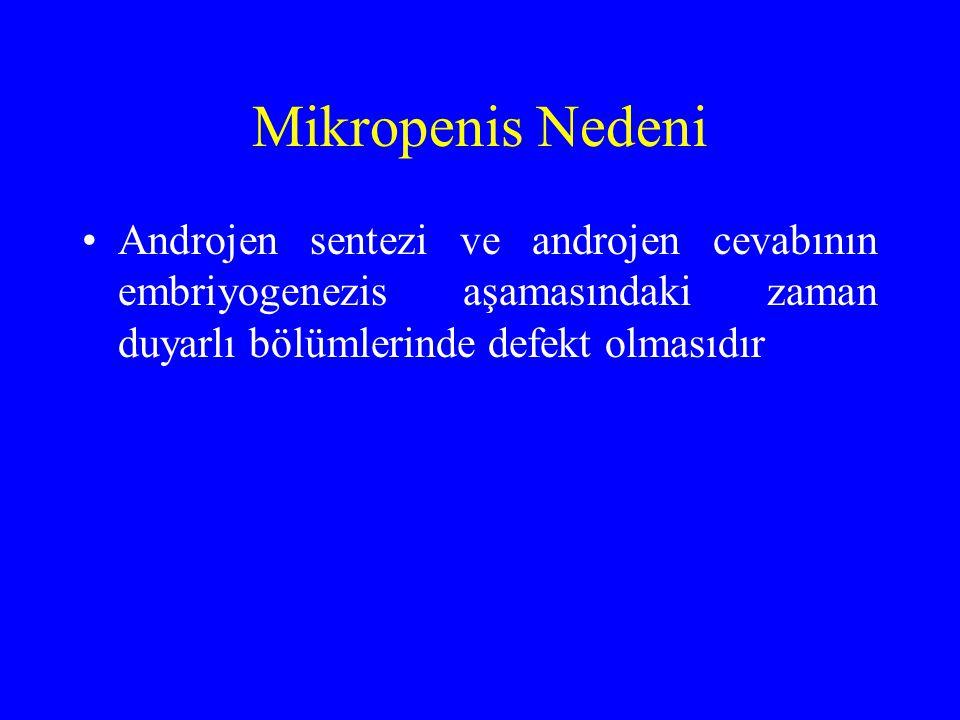 Mikropenis Nedeni Androjen sentezi ve androjen cevabının embriyogenezis aşamasındaki zaman duyarlı bölümlerinde defekt olmasıdır