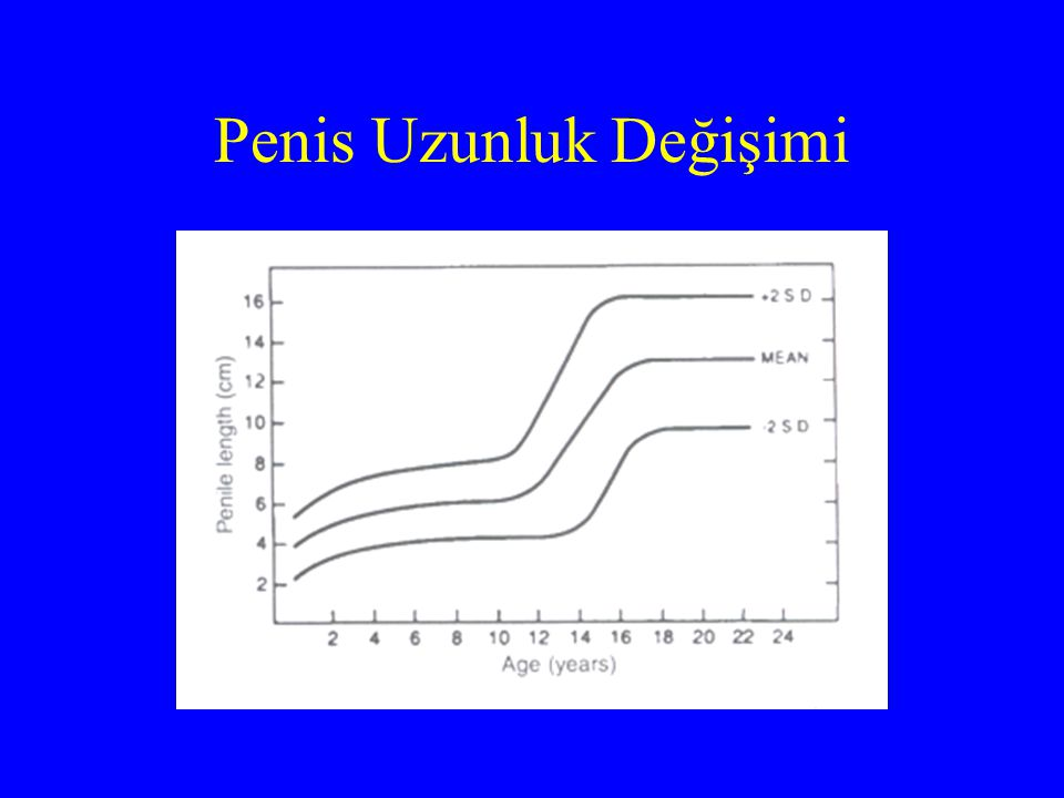 Ortalama Değerler Yeni doğan (term):3,5±0,4cm Yetişkin:12,4±2,7cm Yeni doğan (30 hafta):1,9cm altı Yetişkin:9,3cm altı MİKROPENİS OLARAK KABUL EDİLİR