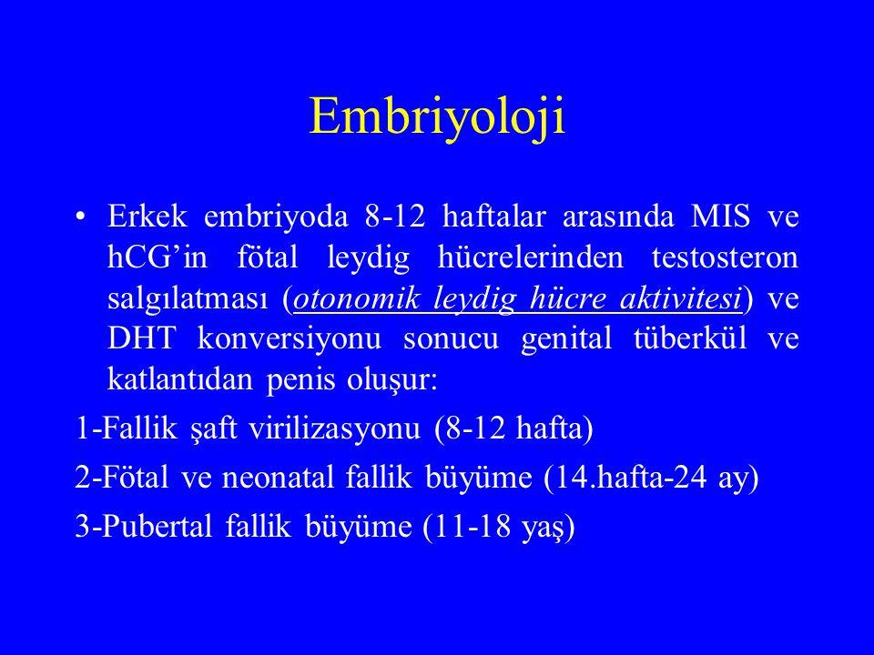 Embriyoloji Erkek embriyoda 8-12 haftalar arasında MIS ve hCG'in fötal leydig hücrelerinden testosteron salgılatması (otonomik leydig hücre aktivitesi) ve DHT konversiyonu sonucu genital tüberkül ve katlantıdan penis oluşur: 1-Fallik şaft virilizasyonu (8-12 hafta) 2-Fötal ve neonatal fallik büyüme (14.hafta-24 ay) 3-Pubertal fallik büyüme (11-18 yaş)