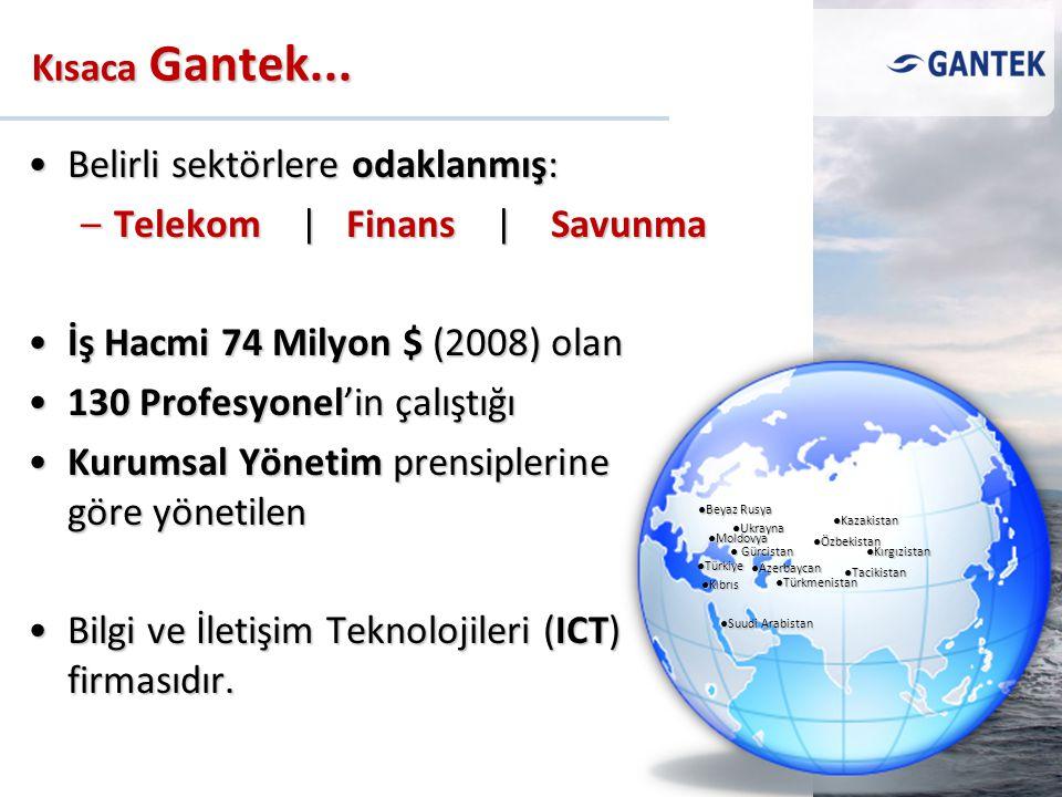 Belirli sektörlere odaklanmış:Belirli sektörlere odaklanmış: –Telekom | Finans | Savunma İş Hacmi 74 Milyon $ (2008) olanİş Hacmi 74 Milyon $ (2008) o