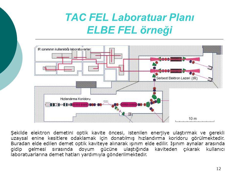 12 TAC FEL Laboratuar Planı ELBE FEL örneği Şekilde elektron demetini optik kavite öncesi, istenilen enerjiye ulaştırmak ve gerekli uzaysal enine kesi