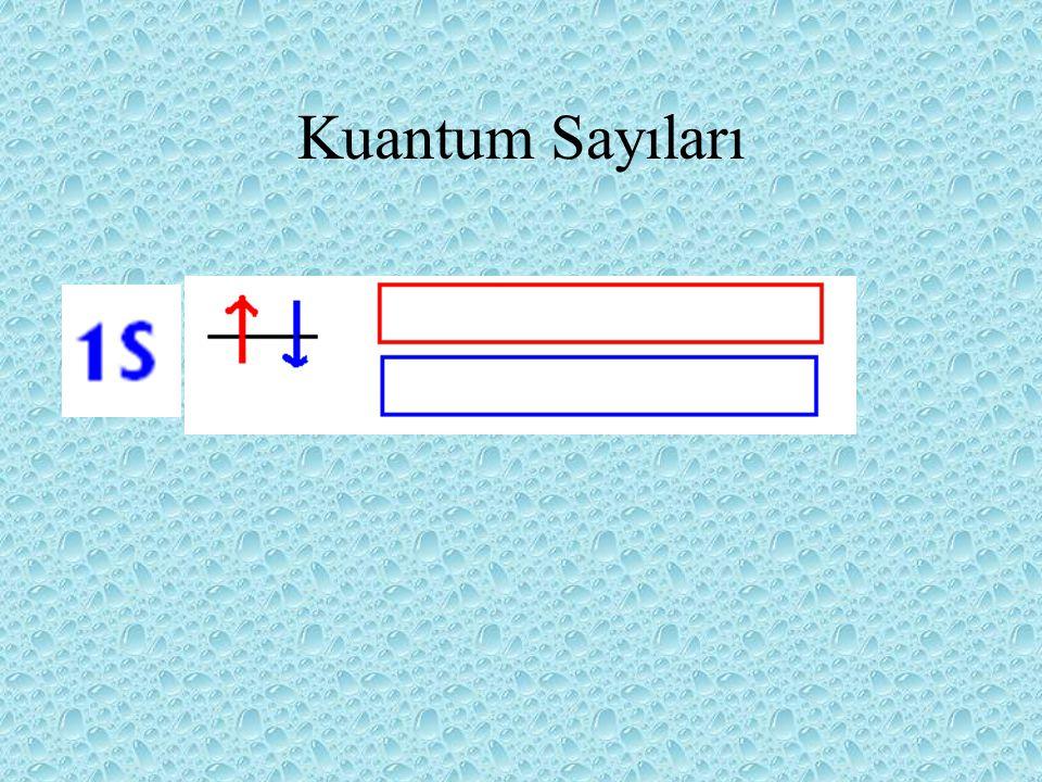 Spinin özeliğini kuantum sayısı ms tarafında belirlenir.