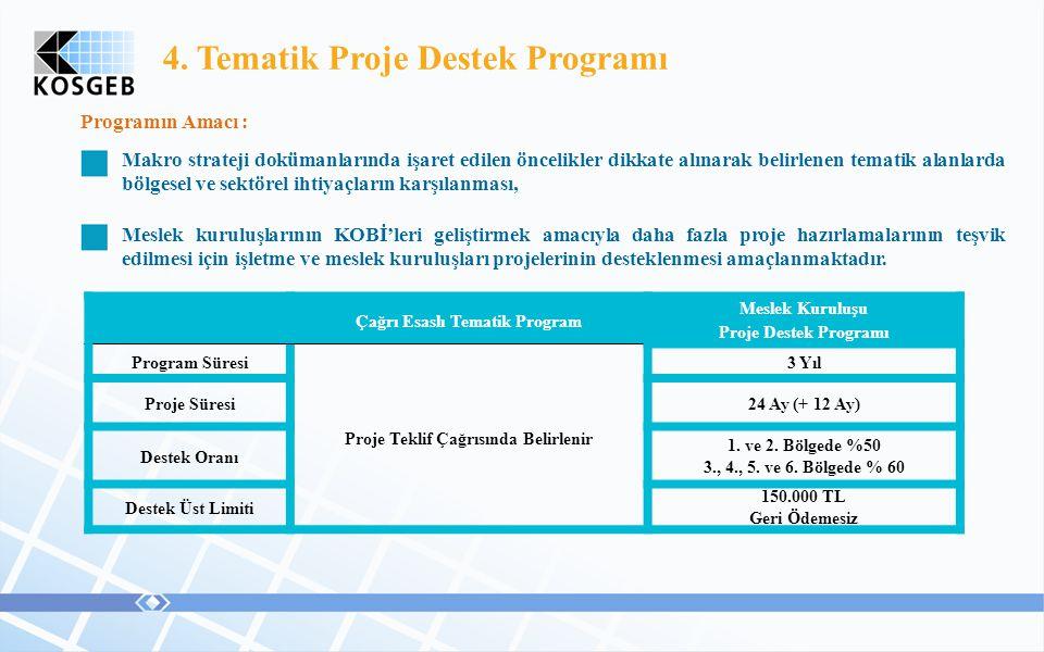 4. Tematik Proje Destek Programı Programın Amacı : Makro strateji dokümanlarında işaret edilen öncelikler dikkate alınarak belirlenen tematik alanlard
