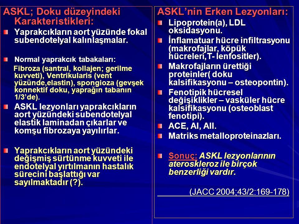 ASKL; Doku düzeyindeki Karakteristikleri: Yaprakcıkların aort yüzünde fokal subendotelyal kalınlaşmalar. Normal yaprakcık tabakaları: Fibroza (santral