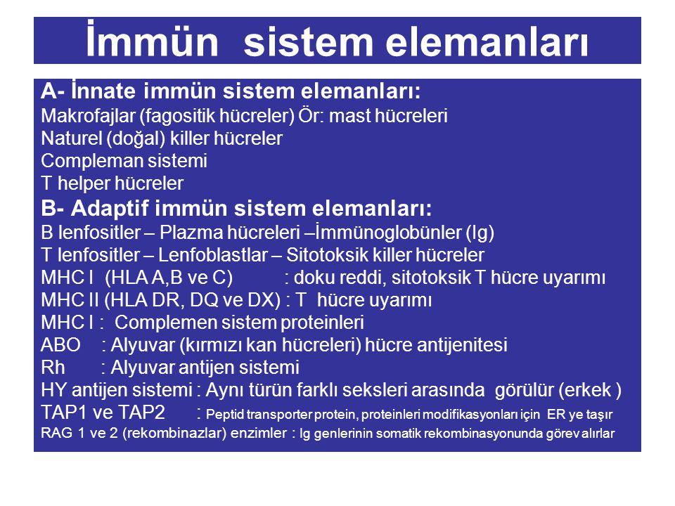 İmmün sistem elemanları A- İnnate immün sistem elemanları: Makrofajlar (fagositik hücreler) Ör: mast hücreleri Naturel (doğal) killer hücreler Complem