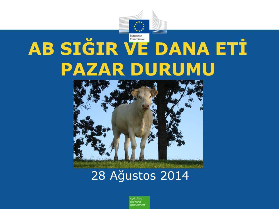 AB SIĞIR VE DANA ETİ PAZAR DURUMU 28 Ağustos 2014
