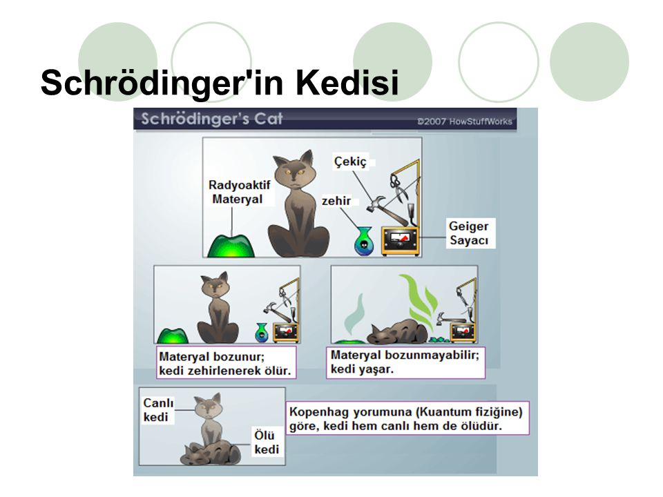 6  Deneyde kapalı bir kutunun içinde bir düzenek ve başlangıçta canlı olan bir kedi vardır.