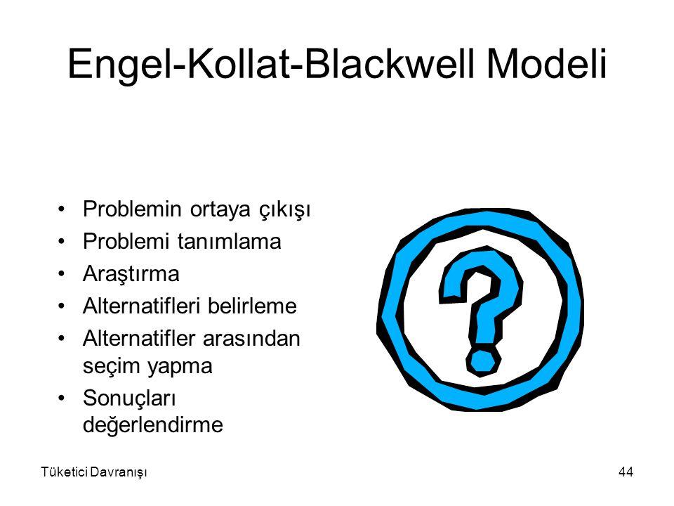 Tüketici Davranışı44 Engel-Kollat-Blackwell Modeli Problemin ortaya çıkışı Problemi tanımlama Araştırma Alternatifleri belirleme Alternatifler arasınd