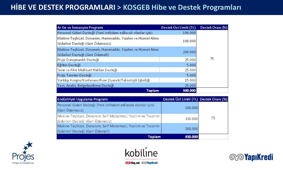 HİBE VE DESTEK PROGRAMLARI > KOSGEB Hibe ve Destek Programları