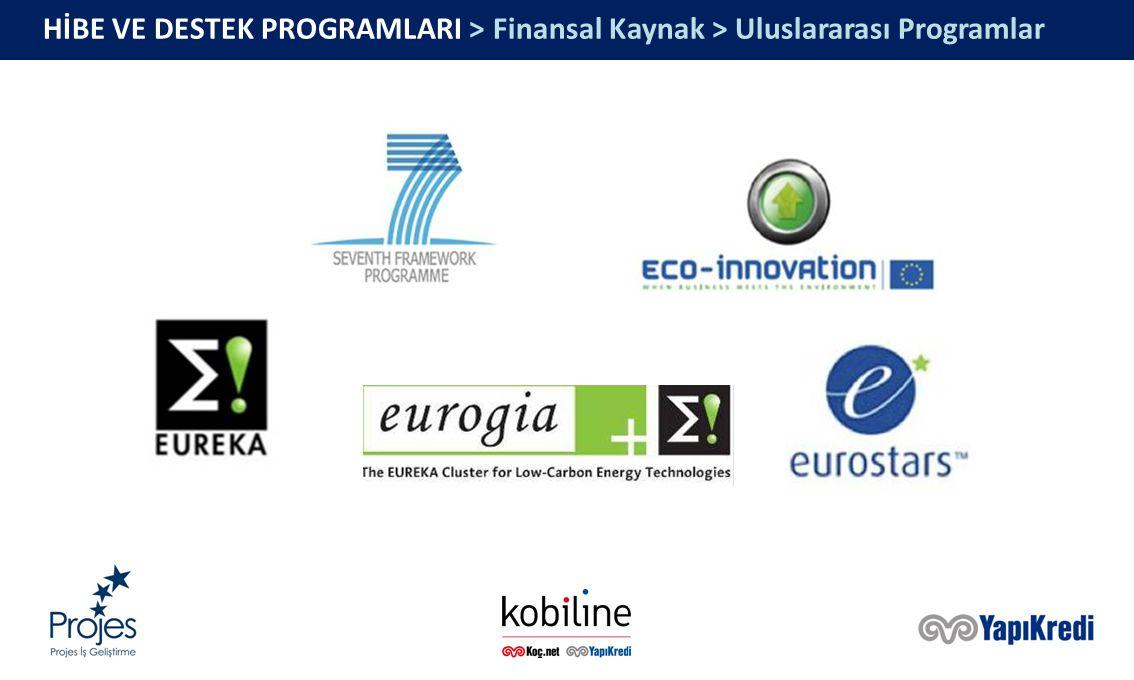 HİBE VE DESTEK PROGRAMLARI > Finansal Kaynak > Uluslararası Programlar