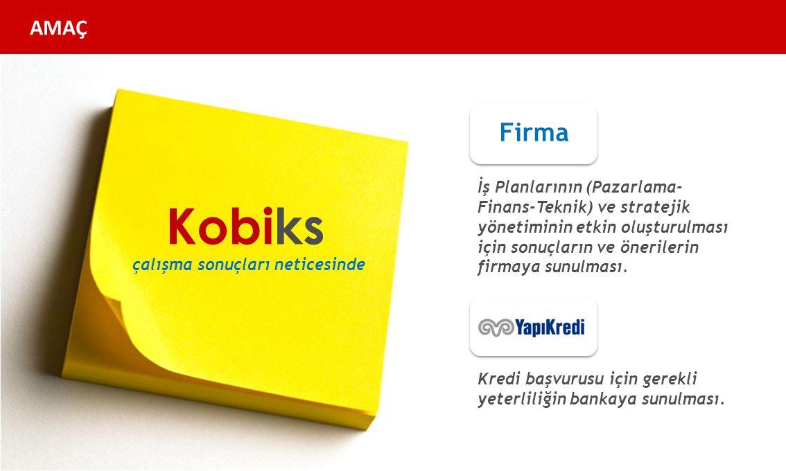 Kobiks Firma İş Planlarının (Pazarlama- Finans-Teknik) ve stratejik yönetiminin etkin oluşturulması için sonuçların ve önerilerin firmaya sunulması.