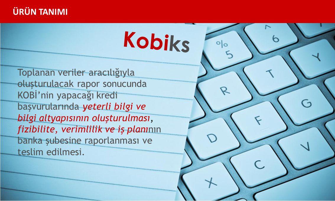 Kobiks Toplanan veriler aracılığıyla oluşturulacak rapor sonucunda KOBİ'nin yapacağı kredi başvurularında yeterli bilgi ve bilgi altyapısının oluşturulması, fizibilite, verimlilik ve iş planının banka şubesine raporlanması ve teslim edilmesi.