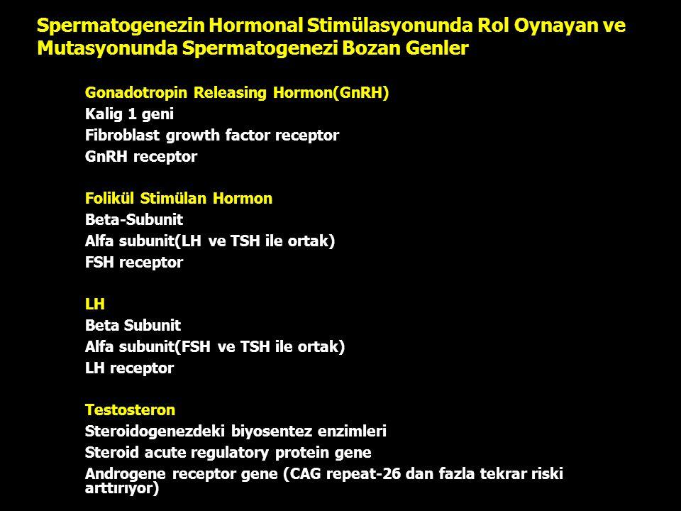Spermatogenezin Hormonal Stimülasyonunda Rol Oynayan ve Mutasyonunda Spermatogenezi Bozan Genler –Gonadotropin Releasing Hormon(GnRH) –Kalig 1 geni –F
