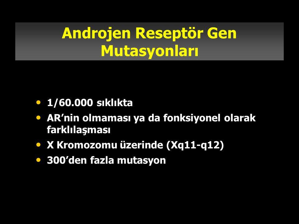 Androjen Reseptör Gen Mutasyonları 1/60.000 sıklıkta AR'nin olmaması ya da fonksiyonel olarak farklılaşması X Kromozomu üzerinde (Xq11-q12) 300'den fa