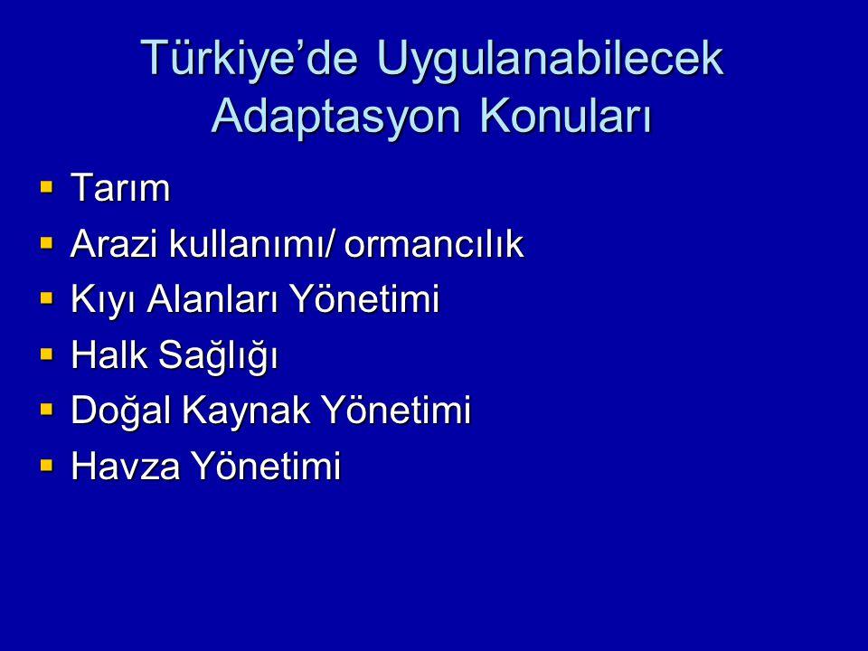 Türkiye'de Uygulanabilecek Adaptasyon Konuları  Tarım  Arazi kullanımı/ ormancılık  Kıyı Alanları Yönetimi  Halk Sağlığı  Doğal Kaynak Yönetimi  Havza Yönetimi