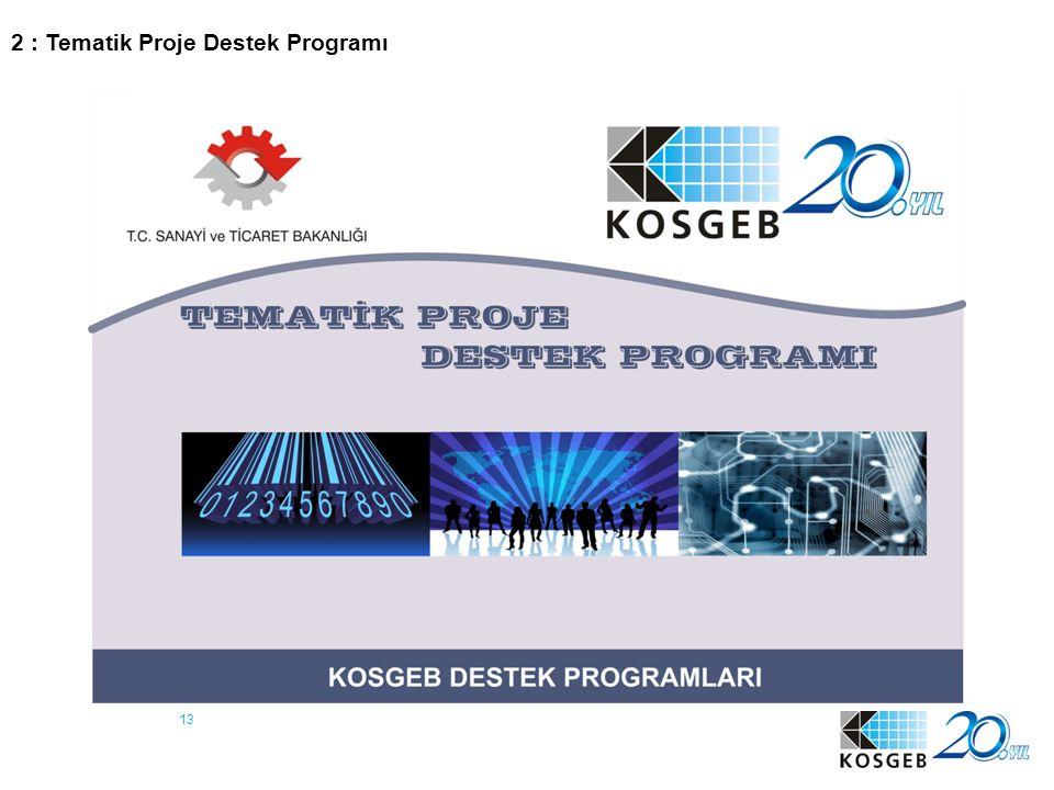 13 2 : Tematik Proje Destek Programı