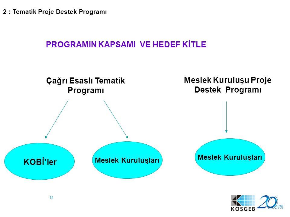 15 PROGRAMIN KAPSAMI VE HEDEF KİTLE Meslek Kuruluşu Proje Destek Programı Çağrı Esaslı Tematik Programı KOBİ'ler Meslek Kuruluşları 2 : Tematik Proje
