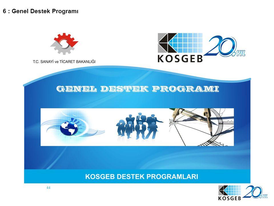 44 6 : Genel Destek Programı