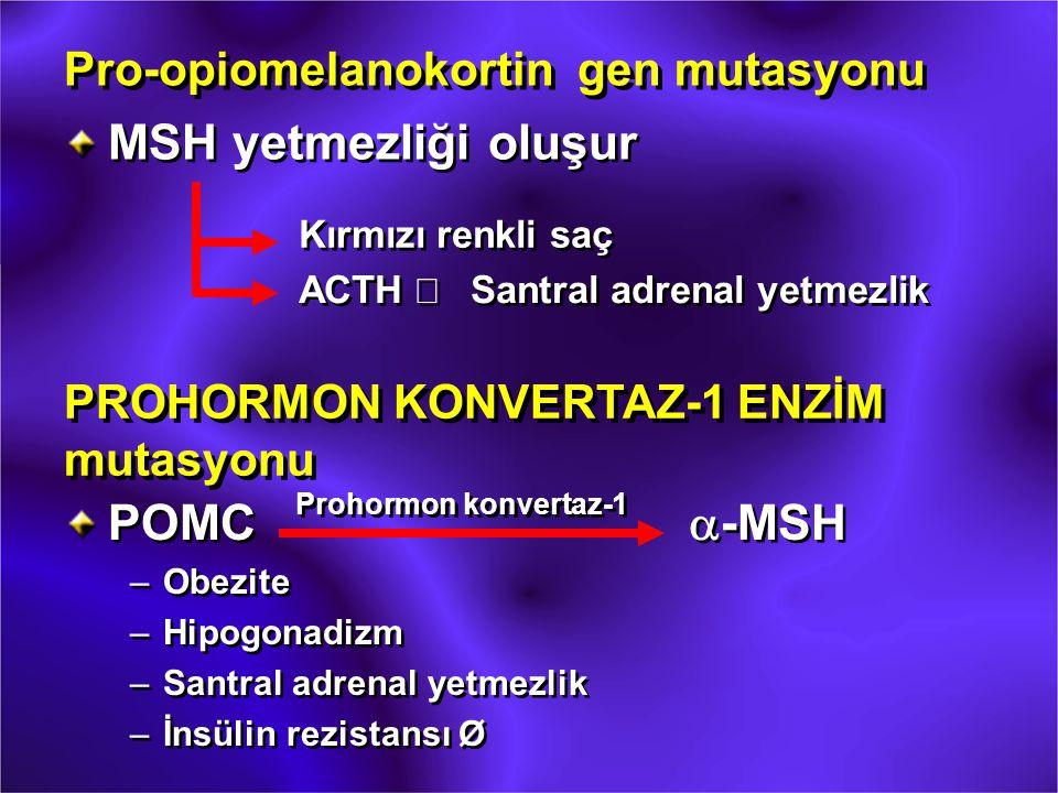 Pro-opiomelanokortin gen mutasyonu MSH yetmezliği oluşur Kırmızı renkli saç ACTH  Santral adrenal yetmezlik PROHORMON KONVERTAZ-1 ENZİM mutasyonu POM
