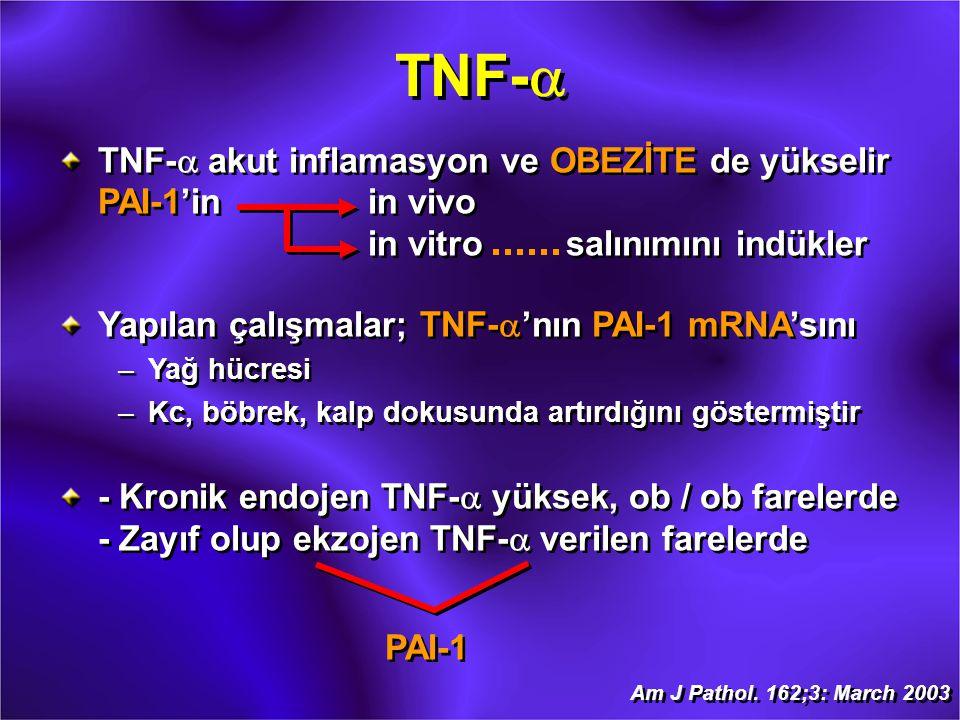 TNF-  TNF-  akut inflamasyon ve OBEZİTE de yükselir PAI-1'inin vivo in vitrosalınımını indükler Yapılan çalışmalar; TNF-  'nın PAI-1 mRNA'sını –Yağ