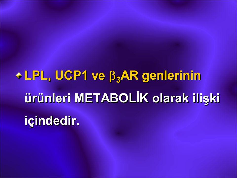 LPL, UCP1 ve b 3 AR genlerinin ürünleri METABOLİK olarak ilişki içindedir.