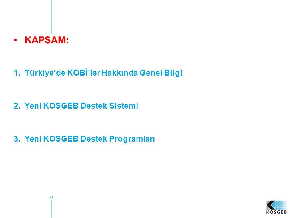 3 1. Türkiye'de KOBİ'ler Hakkında Genel Bilgi