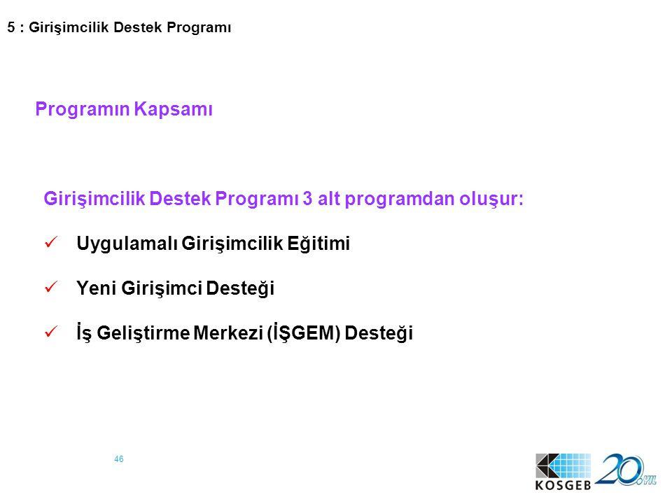 46 Programın Kapsamı Girişimcilik Destek Programı 3 alt programdan oluşur: Uygulamalı Girişimcilik Eğitimi Yeni Girişimci Desteği İş Geliştirme Merkez