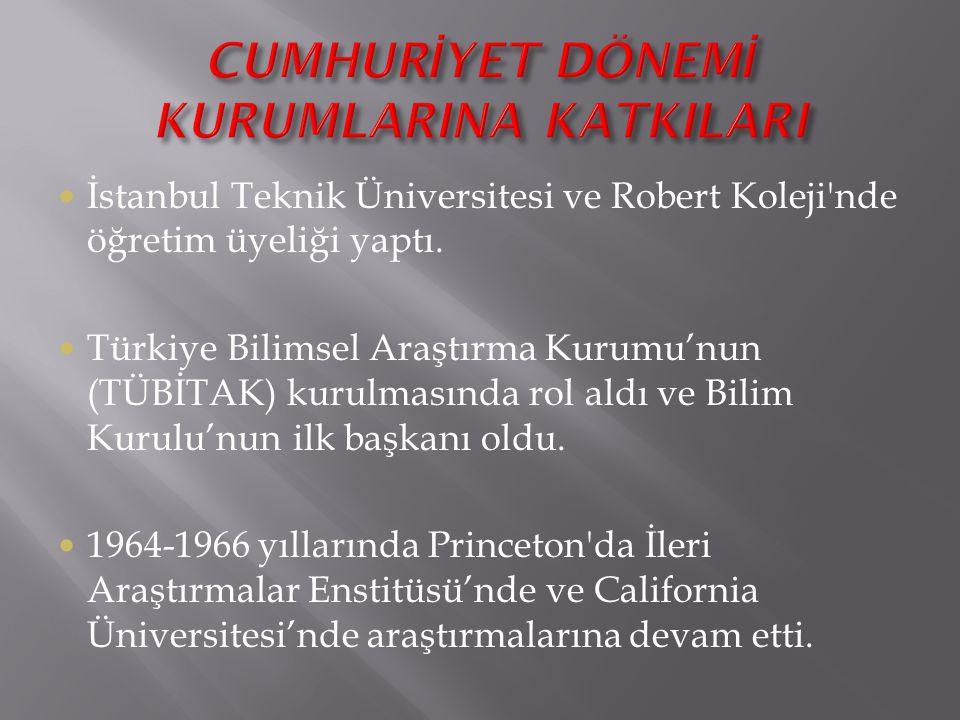 İstanbul Teknik Üniversitesi ve Robert Koleji'nde öğretim üyeliği yaptı. Türkiye Bilimsel Araştırma Kurumu'nun (TÜBİTAK) kurulmasında rol aldı ve Bili