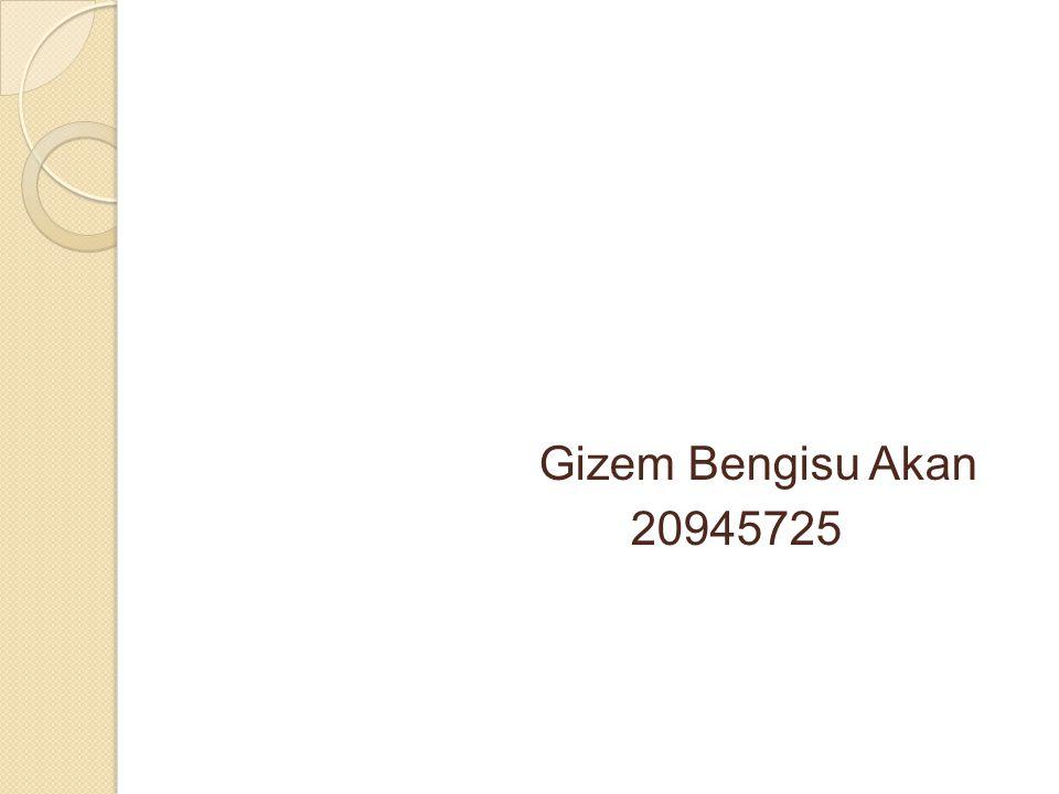 Gizem Bengisu Akan 20945725