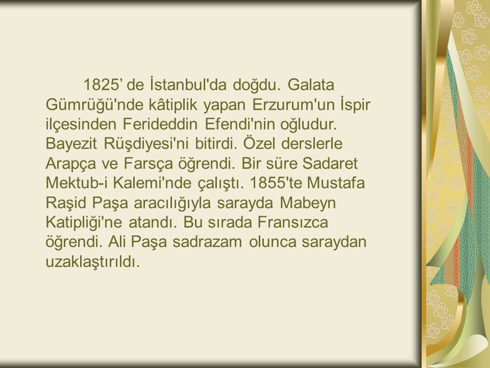 1825' de İstanbul'da doğdu. Galata Gümrüğü'nde kâtiplik yapan Erzurum'un İspir ilçesinden Ferideddin Efendi'nin oğludur. Bayezit Rüşdiyesi'ni bitirdi.
