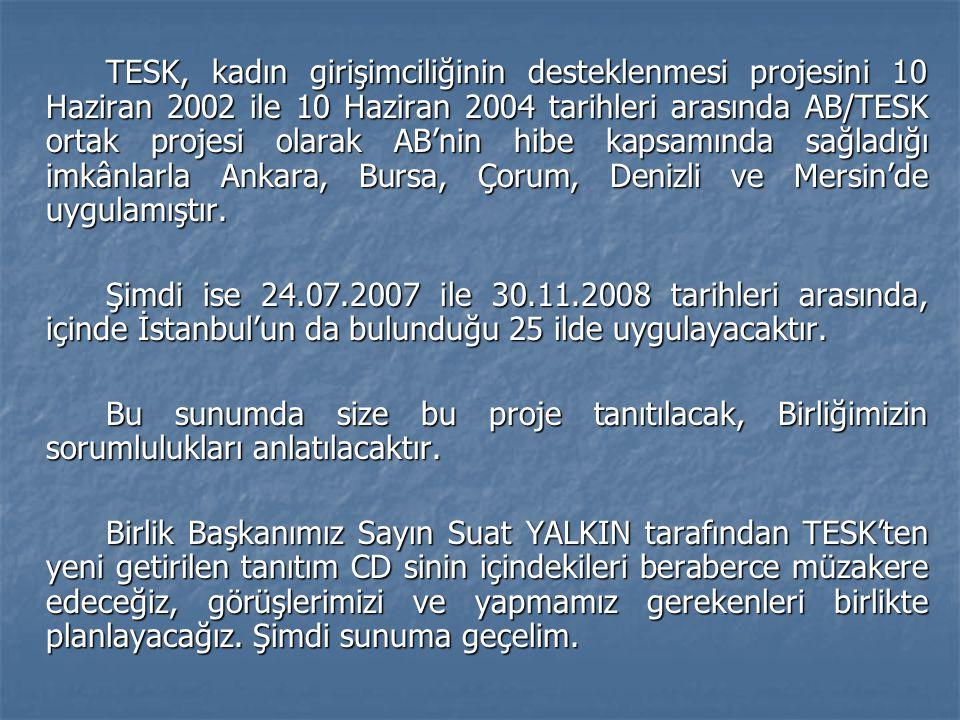 TESK, kadın girişimciliğinin desteklenmesi projesini 10 Haziran 2002 ile 10 Haziran 2004 tarihleri arasında AB/TESK ortak projesi olarak AB'nin hibe k