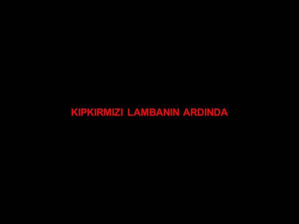 KIPKIRMIZI LAMBANIN ARDINDA