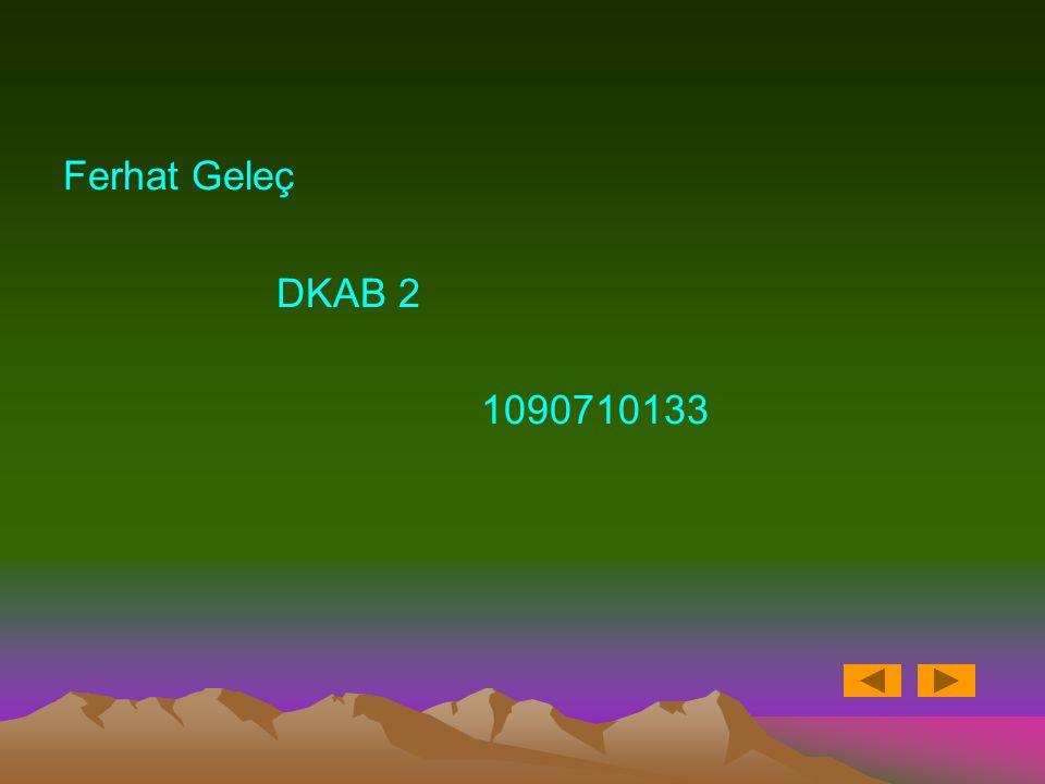 Ferhat Geleç DKAB 2 1090710133