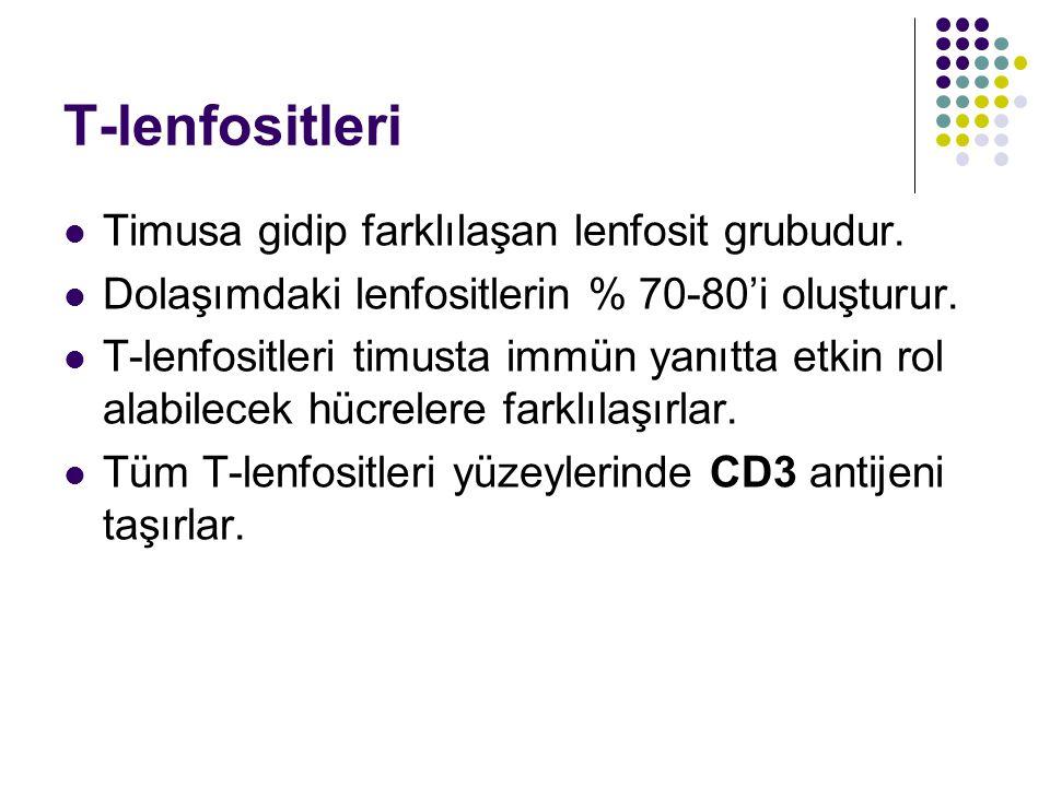 T-lenfositleri Timusa gidip farklılaşan lenfosit grubudur. Dolaşımdaki lenfositlerin % 70-80'i oluşturur. T-lenfositleri timusta immün yanıtta etkin r