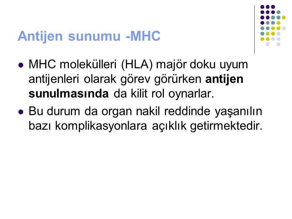 Antijen sunumu -MHC MHC molekülleri (HLA) majör doku uyum antijenleri olarak görev görürken antijen sunulmasında da kilit rol oynarlar. Bu durum da or