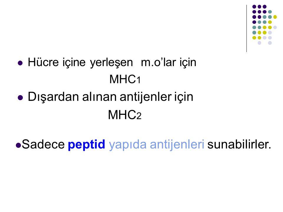 Hücre içine yerleşen m.o'lar için MHC 1 Dışardan alınan antijenler için MHC 2 Sadece peptid yapıda antijenleri sunabilirler.