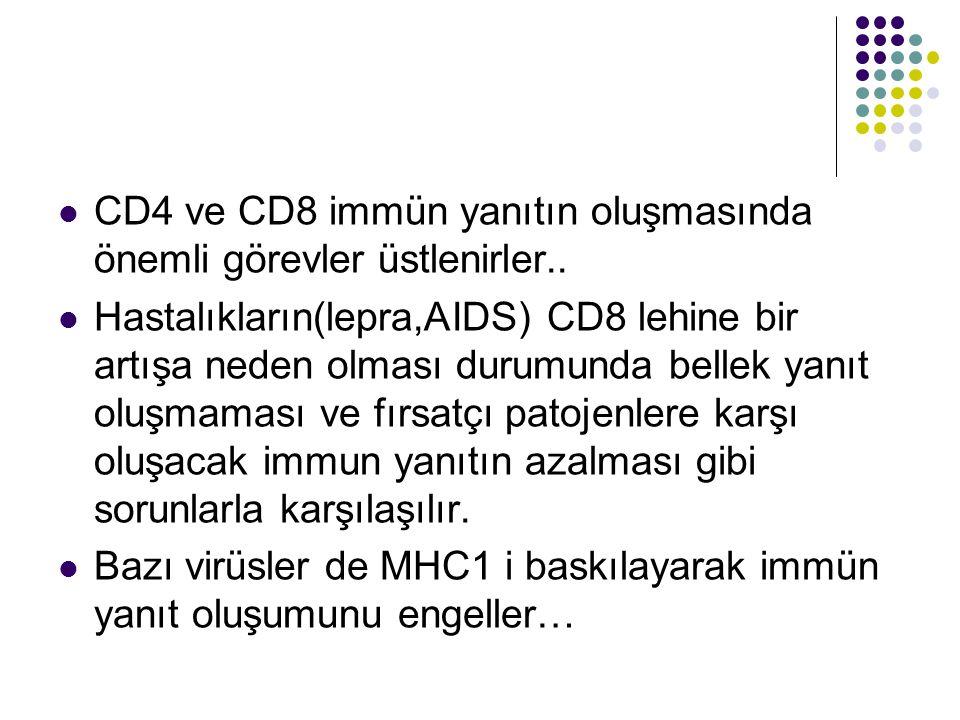 CD4 ve CD8 immün yanıtın oluşmasında önemli görevler üstlenirler.. Hastalıkların(lepra,AIDS) CD8 lehine bir artışa neden olması durumunda bellek yanıt