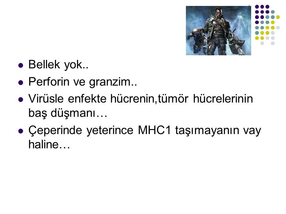 Bellek yok.. Perforin ve granzim.. Virüsle enfekte hücrenin,tümör hücrelerinin baş düşmanı… Çeperinde yeterince MHC1 taşımayanın vay haline…