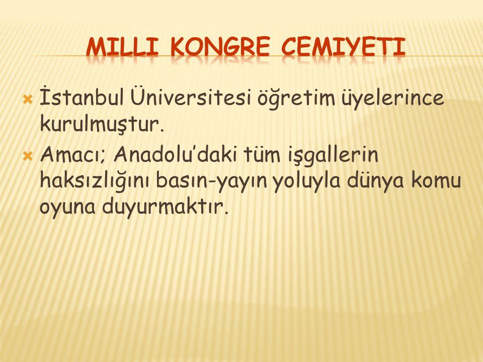  İstanbul Üniversitesi öğretim üyelerince kurulmuştur.  Amacı; Anadolu'daki tüm işgallerin haksızlığını basın-yayın yoluyla dünya komu oyuna duyurma