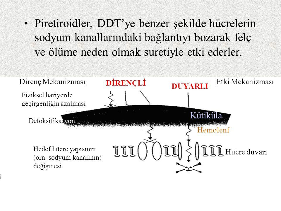 Piretiroidler, DDT'ye benzer şekilde hücrelerin sodyum kanallarındaki bağlantıyı bozarak felç ve ölüme neden olmak suretiyle etki ederler.