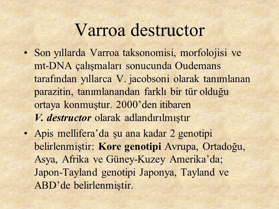 Topyekün Mücadele Bağımsız yapılan uygulama, yakın arılıklardan gelen Varoa etkileşimini engelleyememektedir Yöredeki arıcıların Varroa'ya ilaç uygulamalarını aynı zamana denk getirmeleri gerekir