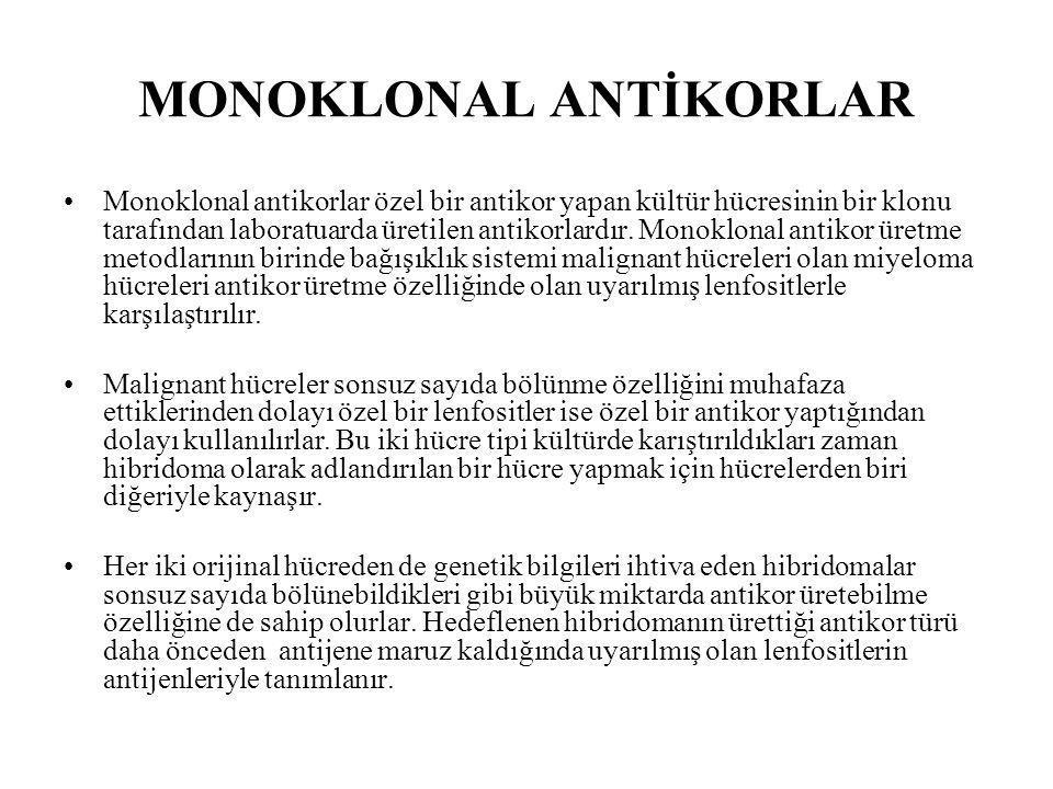 MONOKLONAL ANTİKORLAR Monoklonal antikorlar özel bir antikor yapan kültür hücresinin bir klonu tarafından laboratuarda üretilen antikorlardır. Monoklo