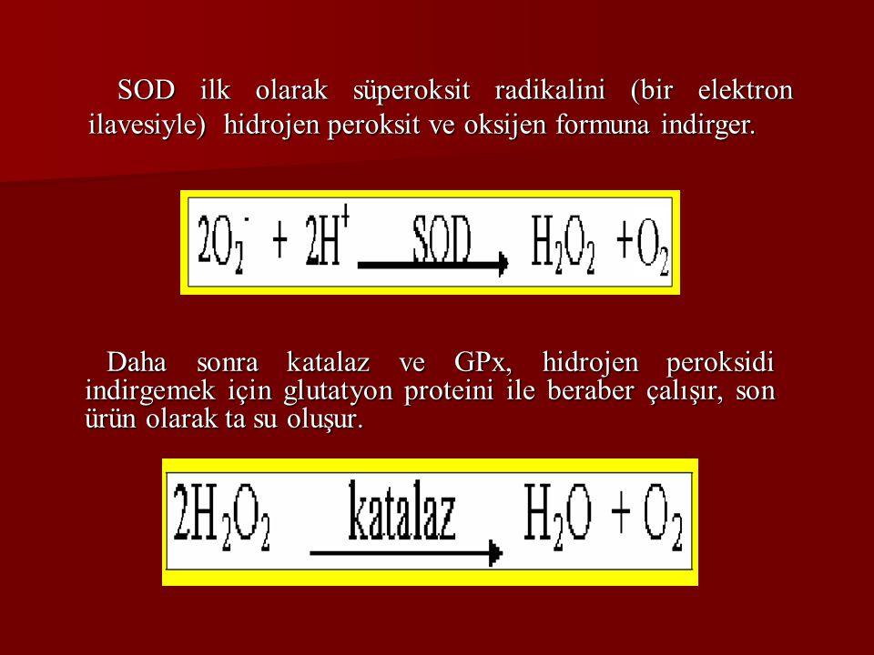 SOD ilk olarak süperoksit radikalini (bir elektron ilavesiyle) hidrojen peroksit ve oksijen formuna indirger. SOD ilk olarak süperoksit radikalini (bi