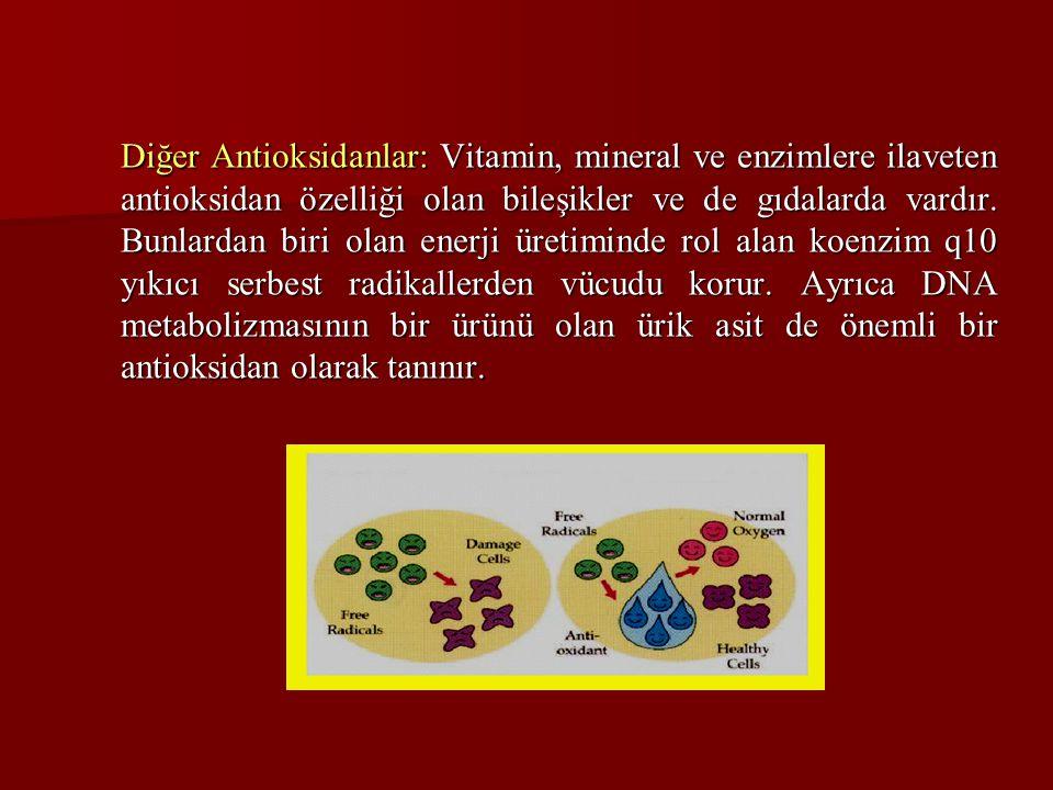 Diğer Antioksidanlar: Vitamin, mineral ve enzimlere ilaveten antioksidan özelliği olan bileşikler ve de gıdalarda vardır. Bunlardan biri olan enerji ü