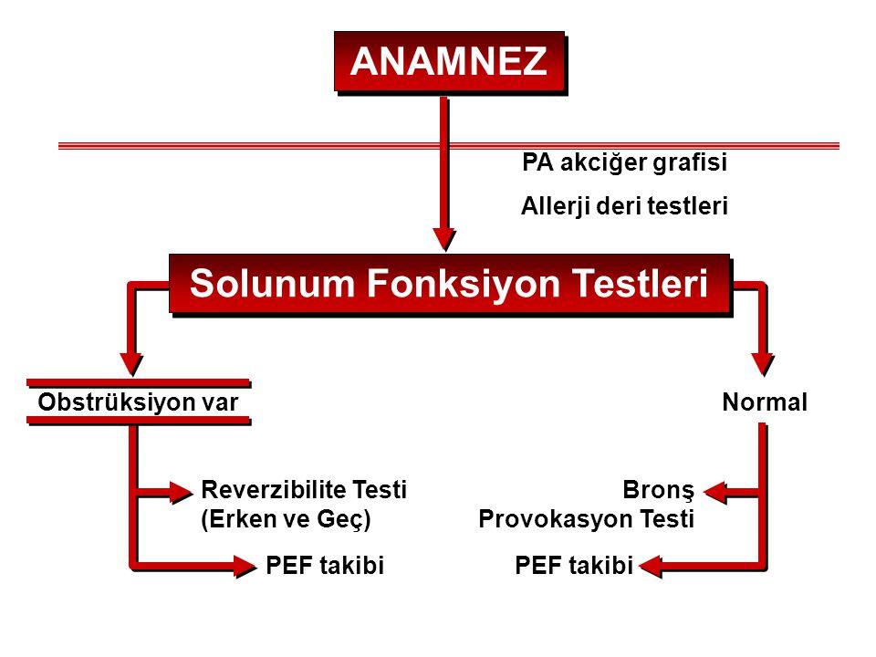 ANAMNEZ Solunum Fonksiyon Testleri Obstrüksiyon varNormal Reverzibilite Testi (Erken ve Geç) PEF takibi Bronş Provokasyon Testi PEF takibi PA akciğer
