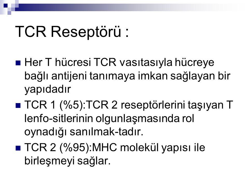 TCR Reseptörü : Her T hücresi TCR vasıtasıyla hücreye bağlı antijeni tanımaya imkan sağlayan bir yapıdadır TCR 1 (%5):TCR 2 reseptörlerini taşıyan T lenfo-sitlerinin olgunlaşmasında rol oynadığı sanılmak-tadır.