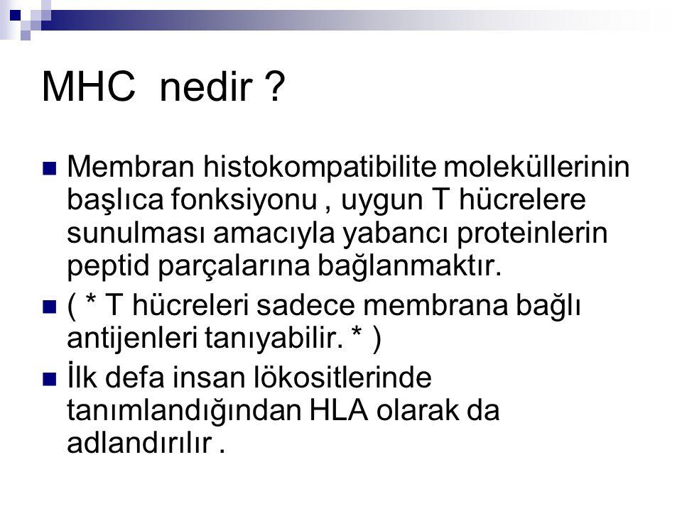 MHC nedir .