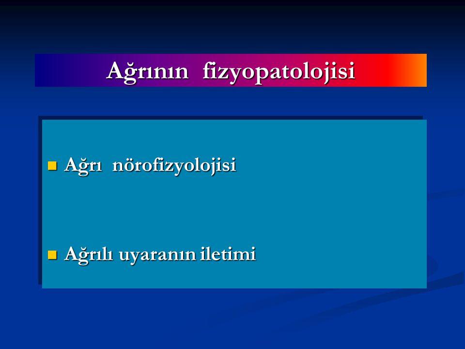 Ağrının fizyopatolojisi Ağrı nörofizyolojisi Ağrı nörofizyolojisi Ağrılı uyaranın iletimi Ağrılı uyaranın iletimi Ağrı nörofizyolojisi Ağrı nörofizyolojisi Ağrılı uyaranın iletimi Ağrılı uyaranın iletimi